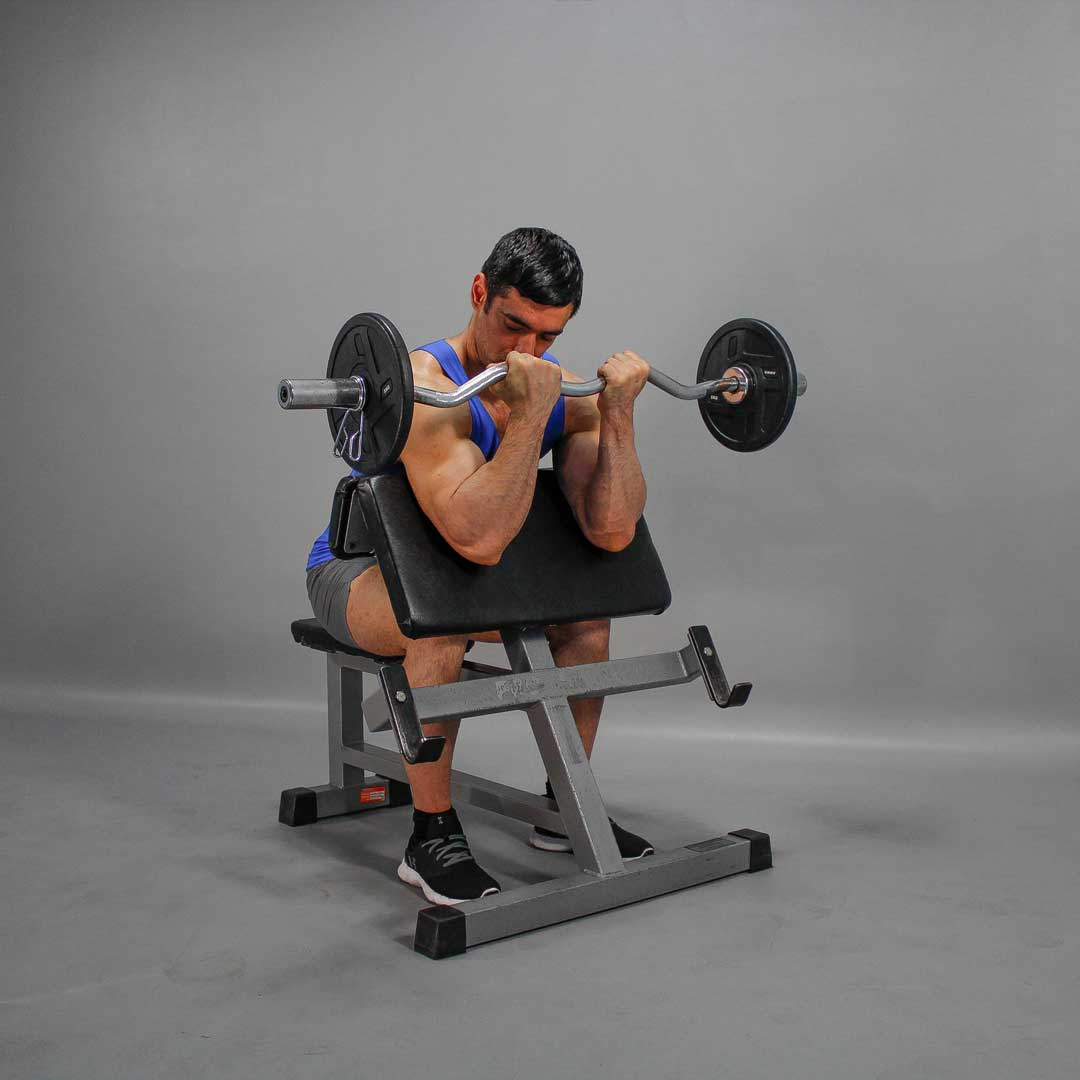 EZ-Bar Scott Curl End Position Fit Drills Exercise